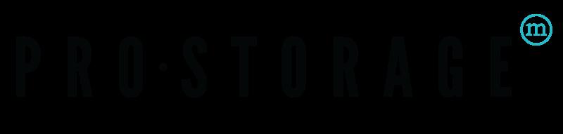 Pro Storage Logo